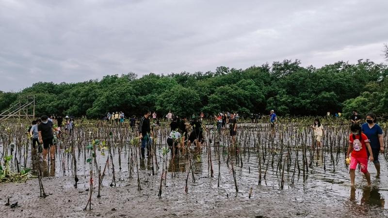 รีวิวงานจิตอาสา - ปลูกป่าโกงกาง